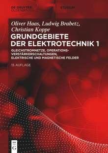 Ludwig Brabetz: Elektrotechnik 1: Gleichstromnetze, Operationsverstärkerschaltungen, elektrische und magnetische Felder, Buch