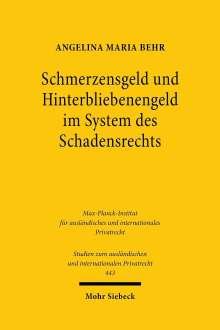 Angelina Maria Behr: Schmerzensgeld und Hinterbliebenengeld im System des Schadensrechts, Buch