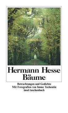 Hermann Hesse: Bäume, Buch