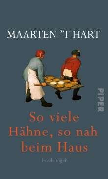 Maarten 'T Hart: So viele Hähne, so nah beim Haus, Buch