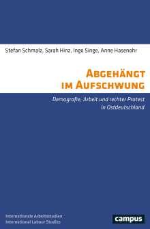 Stefan Schmalz: Abgehängt im Aufschwung, Buch