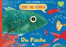 Lucia Scuderi: Lerne uns kennen - Die Fische, Buch