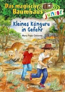 Mary Pope Osborne: Das magische Baumhaus junior 18 - Kleines Känguru in Gefahr, Buch