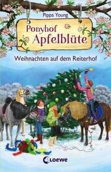 Pippa Young: Ponyhof Apfelblüte - Weihnachten auf dem Reiterhof, Buch
