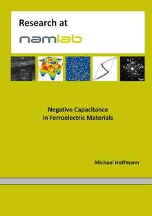 Michael Hoffmann: Negative Capacitance in Ferroelectric Materials, Buch
