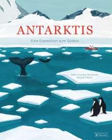 Mario Cuesta Hernando: Antarktis, Buch