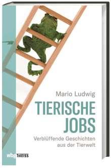 Mario Ludwig: Tierische Jobs, Buch