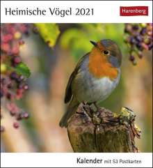 Heimische Vögel 2020, Diverse