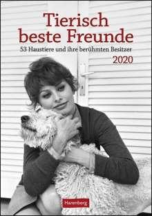 Brigitte Ebersbach: Tierisch beste Freunde Kalender 2020, Diverse