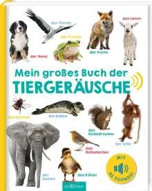 Mein großes Buch der Tiergeräusche, Buch
