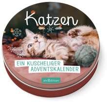 Katzen - Ein kuscheliger Adventskalender für Katzenfans, Buch