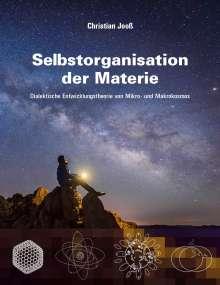 Christian Jooß: Selbstorganisation der Materie, Buch