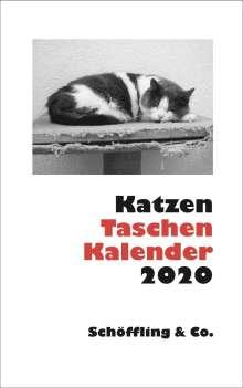 Katzen Taschenkalender 2020, Diverse