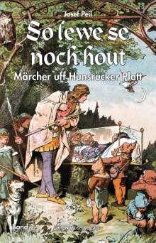 Josef Peil: So lewe se noch hout, Buch