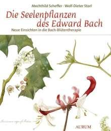 Mechthild Scheffer: Die Seelenpflanzen des Edward Bach, Buch
