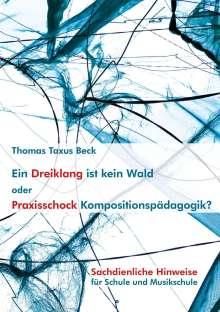 Thomas Taxus Beck: Ein Dreiklang ist kein Wald oder: Praxisschock Kompositionspädagogik?, Buch