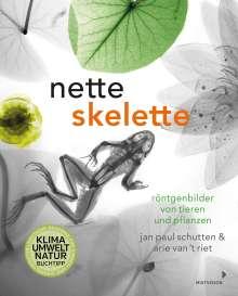 Jan Paul Schutten: Nette Skelette, Buch