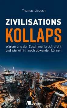 Thomas Liebsch: Zivilisationskollaps, Buch