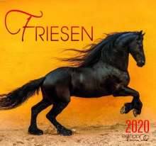 Gabriele Boiselle: Friese 2020, Diverse